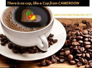 The Cup of Cameroon
